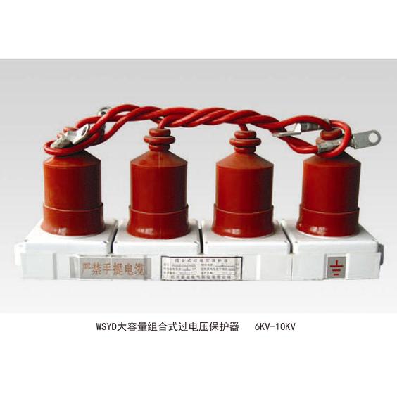 WSYD大容量组合式过电压保护器6K
